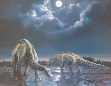 Apatosaurus louisae' retreat