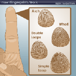 How Fingerprinting Works